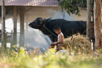 Young farmer playing laptop in farmland at country side, Rural and technology concept at Asia.