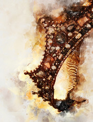 watercolor style and abstract image of beautiful queen/king crown. fantasy medieval period.