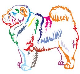 Colorful decorative standing portrait of Chow Chow