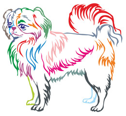 Colorful decorative standing portrait of Japanese Chin