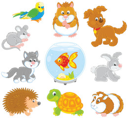 Set of pets including a cat, a dog, a parrot and other domestic animals, vector illustrations in funny cartoon style