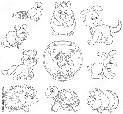 set of pets including a cat a dog a parrot and other domestic animals black and white vector. Black Bedroom Furniture Sets. Home Design Ideas