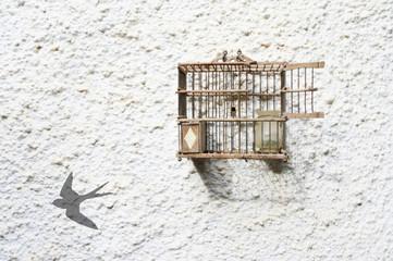 Jaula abierta, sombra de pájaro en la pared, fondo blanco rugoso