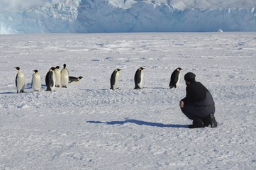 A man in a black overall, against a background of white snow, penguins and special equipment. Antarctic