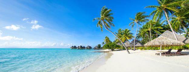 Photo sur cadre textile Palmier Sommer, Sonne, Strand und Meer im Urlaub