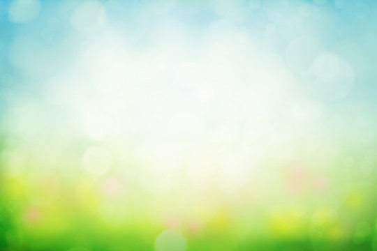 Sunny spring meadow blur background
