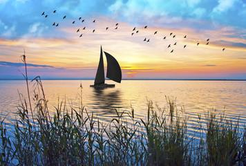 velero en el mar de colores