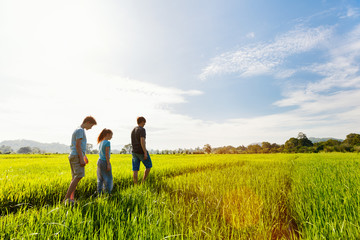 Family walking in rice field
