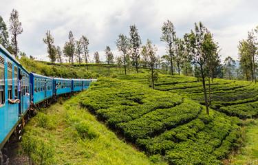 Train in Sri Lanka