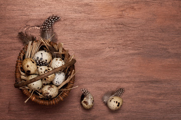 Background with quail eggs