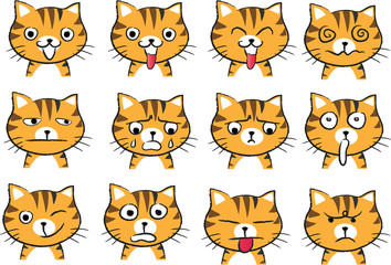 cat Expression package