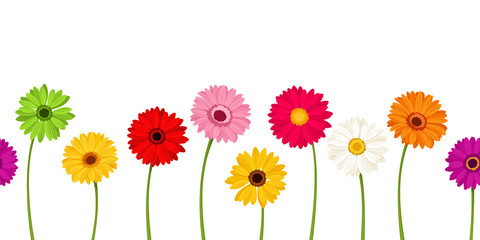 Vector horizontal seamless background with colorful gerbera flowers.