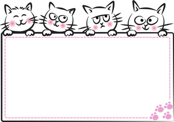 cats with blank card