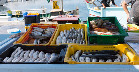 The Marche Aux Poissons or fish market in Vieux Port or Old Port, Marseilles France. Yellow, black green and orange plastic bins hold the catch of the day.