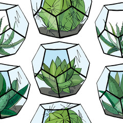 Seamless pattern with florarium with different succulent. Endless texture with home indoor plants