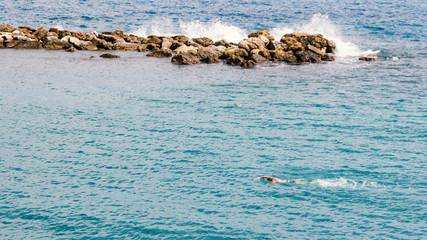Man swimming in the sea in front of stone coast