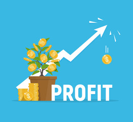 Profit concept. Financial growth. Investments and revenue increase.