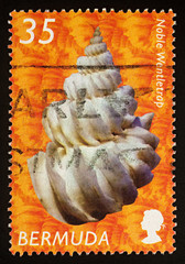 Noble Wentletrap on postage stamp