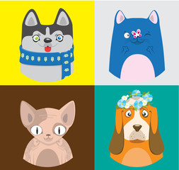 Colorful cartoon cats and dogs collection. Vector pattern of pets in bright squares.
