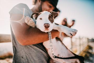 Cute puppy an his owner at the beach Wall mural