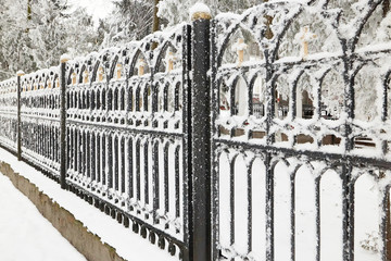 fence cast-iron in winter in icy frost.