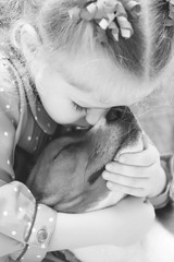 Little girl hugging a basenji dog.Black and white picture.