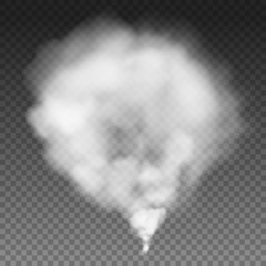 Fog or smoke isolated on transparent background. White special smog effect effect. Vector illustration