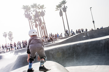 Skate Park in Los Angeles