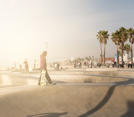 skate park in Venice Beach.
