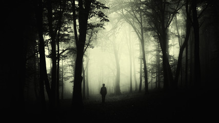 man silhouette wandering in forest at night, dark scary surreal landscape