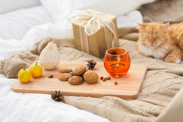 Fototapete - oatmeal cookies, christmas gift and candle in bed