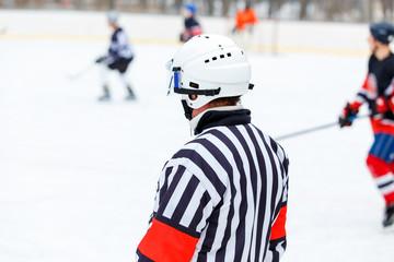 Referee on rink on ice hockey game.