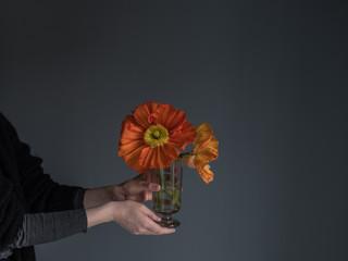 Frau hält Vase mit großen Mohnblumen in der Hand vor grauem Hintergrund