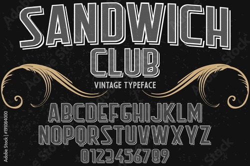Script handcrafted vector calligraphy font typeface vector