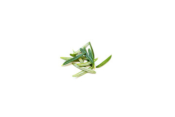 Fresh leaves of organic rosemary isolated on a white background with a blur effect