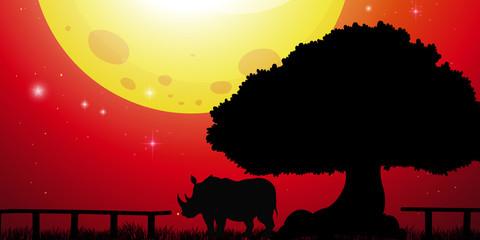 Silhouette rhino in the park