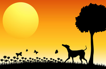 Silhouette scene with dog and butterflies
