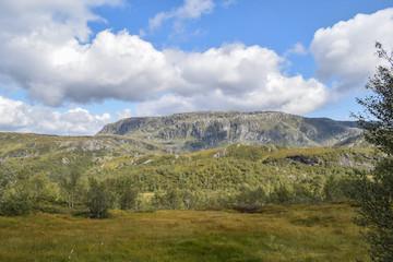 Felsen Landschaft