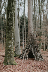 Rustic wooden conical tent of tree branches