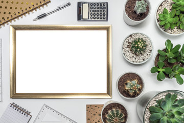 Top view on white desk with many cactuses and succulents in gray concrete and glass pots, gold empty frame with space for text, dotted notebook, calculator, notebook and ruler