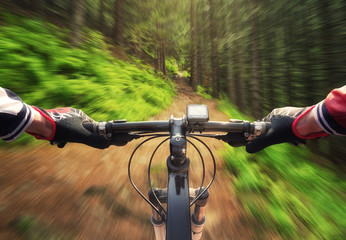 Ride in summer forest. Sport and active life concept