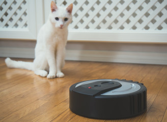 Black robotic vacuum cleaner and white cat.