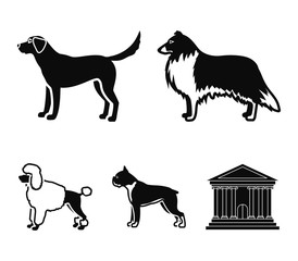 Collie, labrador, boxer, poodle. Dog breeds set collection icons in black style vector symbol stock illustration web.