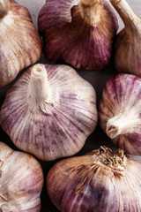 Fresh garlic heads, closeup