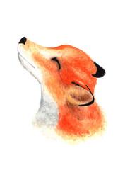 Cute little fox face. Watercolor