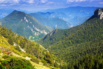 view of forest  mountains landscape