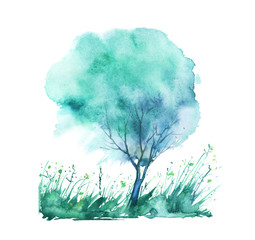 Watercolor summer landscape. Green, blue tree on a bright grass. On a white background. A summer tree. Watercolor picture, logo, postcard