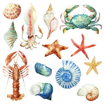 Watercolor underwater life set