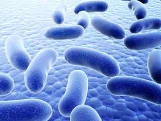 Many pathogenic viruses