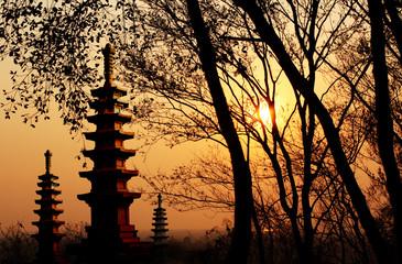 Beautiful sunset and wild landscape